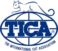 TICA (The International Cat Association)